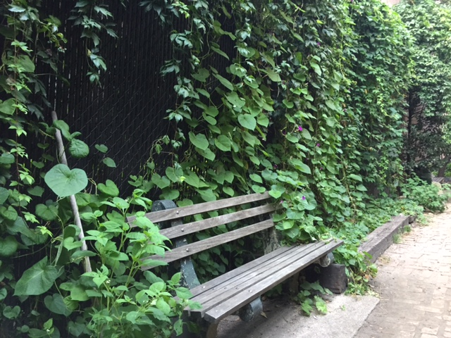 The smallest park in nyc