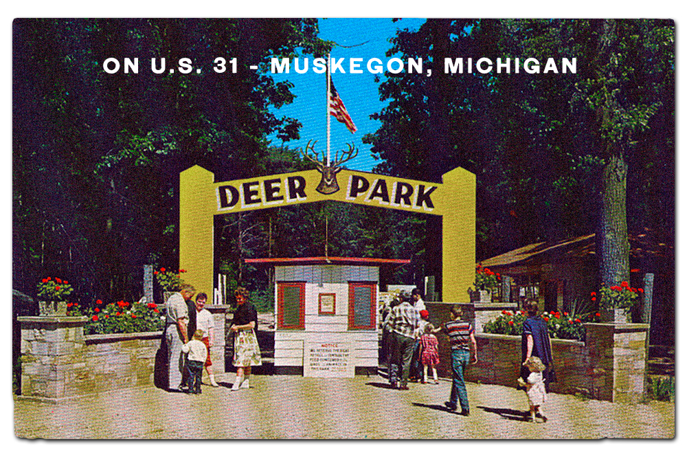 Vintage postcard, Deer Park.
