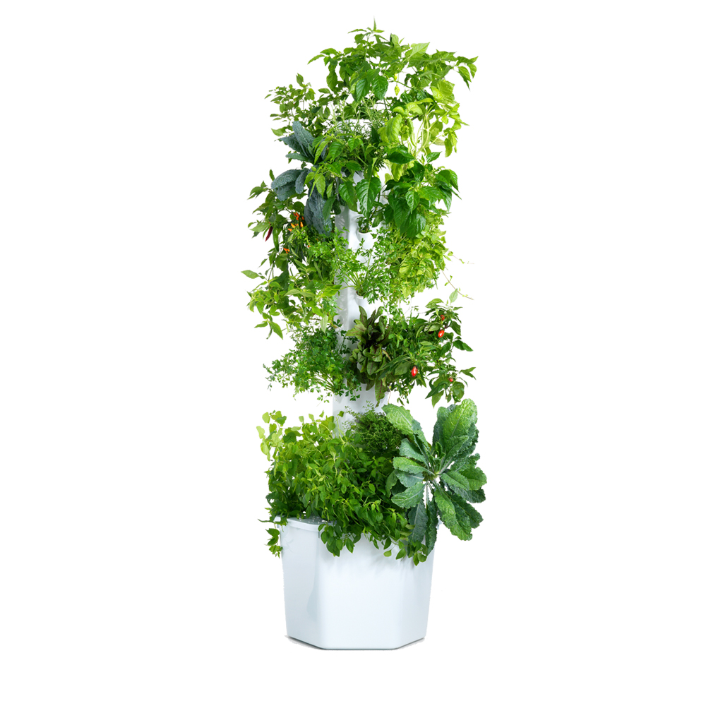 Aerospring Garden Pro - 12 sections, 36 plants - 12 sections, 36 plantsS$680