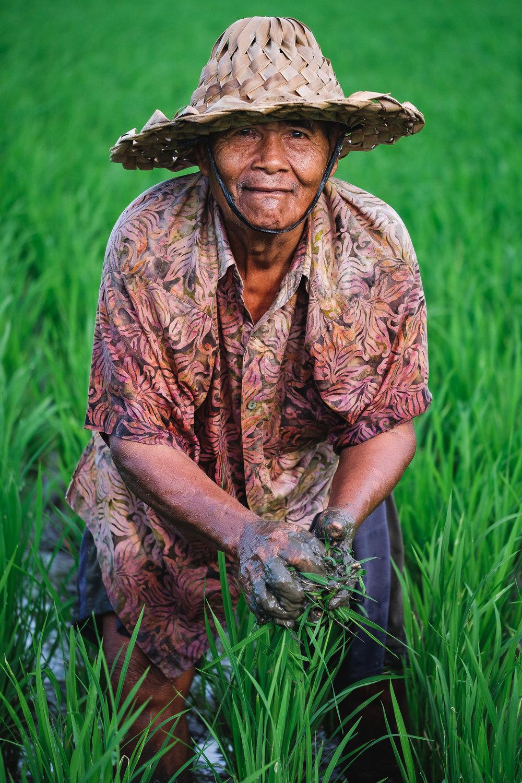 A curious farmer in Ubud, Bali - Indonesia.  Fujifilm X-E3 + Fujinon XF 80mm f/2.8 R LM WR OIS Macro  1/1000sec, f/2.8, ISO 320