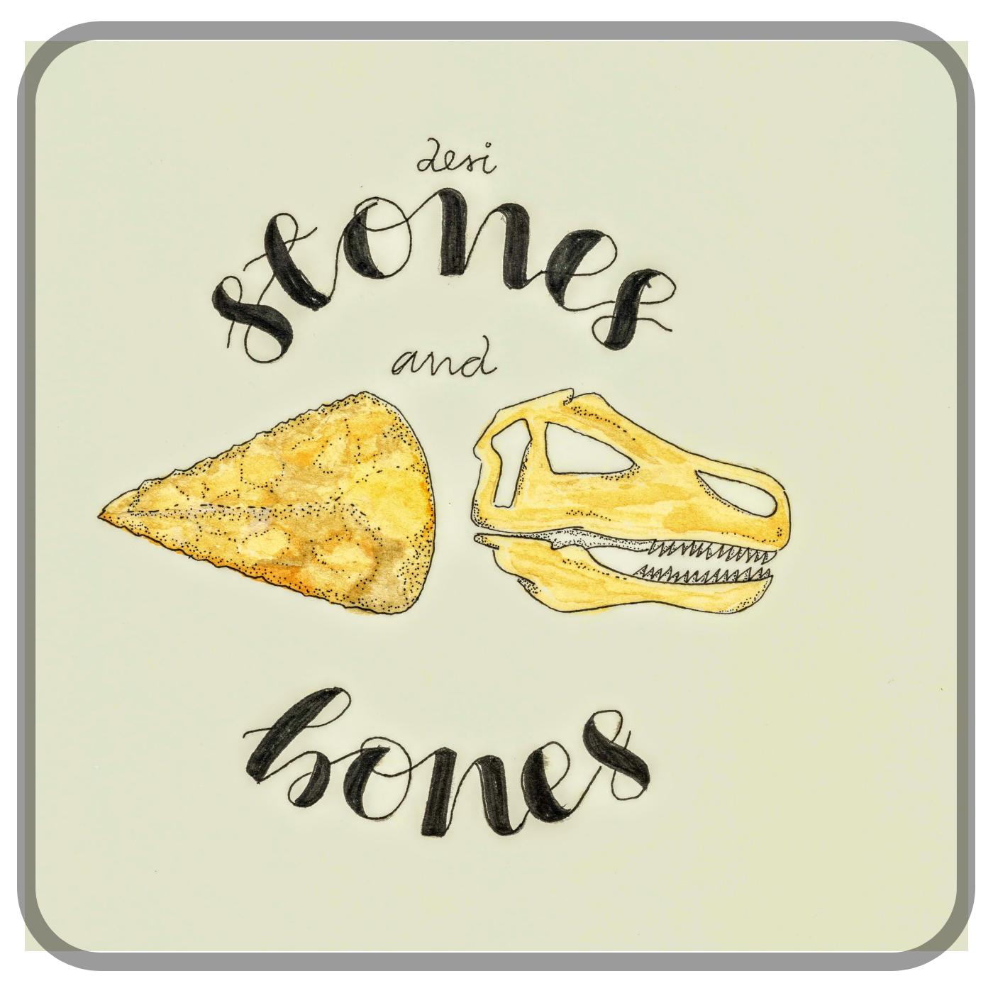 Desi Stones and Bones