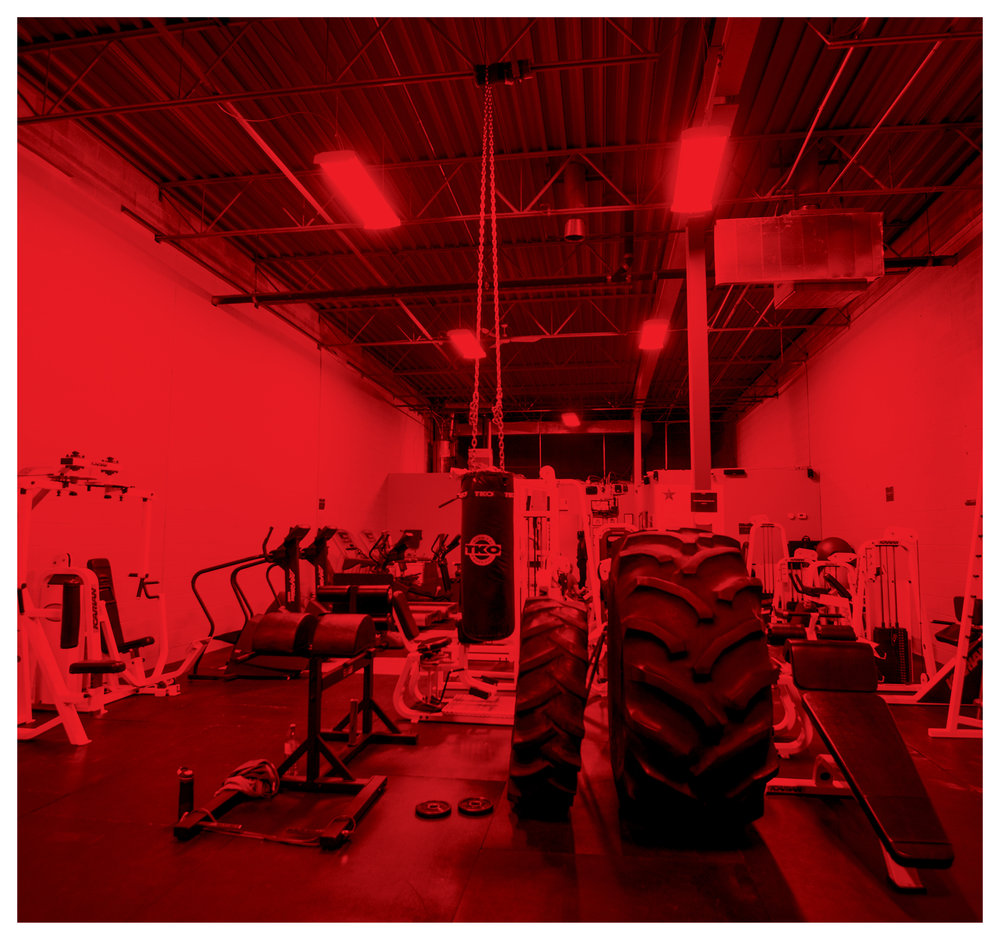 GYM MEMBERSHIPS -