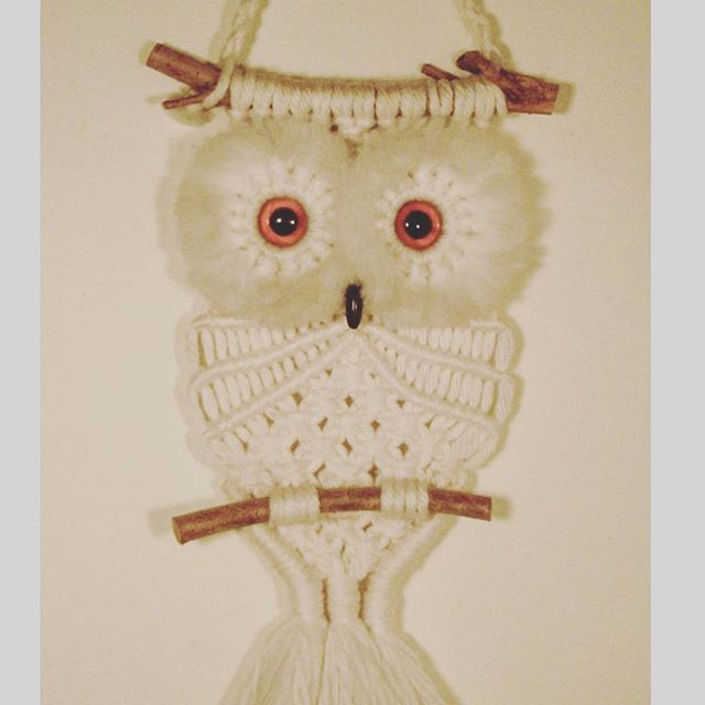 The owl that everyone's mom had in the 80's
