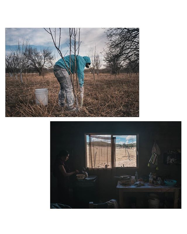 - With fewer undocumented workers to hire, U.S. farmers are fueling a surge in the number of legal guest workers -  These are images from the apple-producing region of Durango, where more Mexicans are getting temporary visas for better working conditions in the U.S.  For the @washingtonpost along sharp reporting from @ksieff1 and a cross border edit by @chloecolemanmedia. Link on bio! ______________ #migration #photojournalism #migrants #journalism #mexico #usa #photo #colo #border