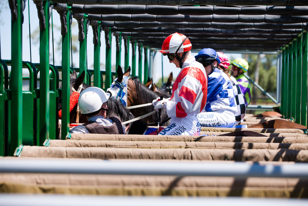 Web Ready Wambo Race 2018 Bell Races - Susan Jacobs Photography-53.JPG