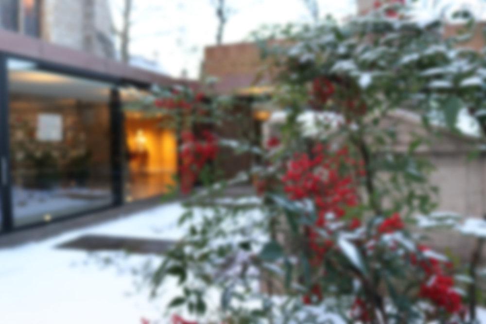 THE GARDEN MUSEUM - Winter Season 2018