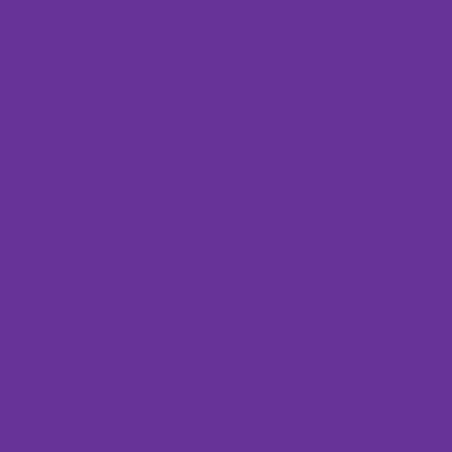 MagiKats Purple