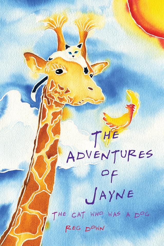 AJayne-Cvr-1b-Kindle - Copy.jpg