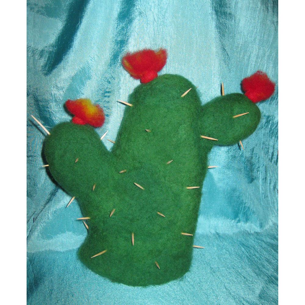 grumpy Mr Cactus