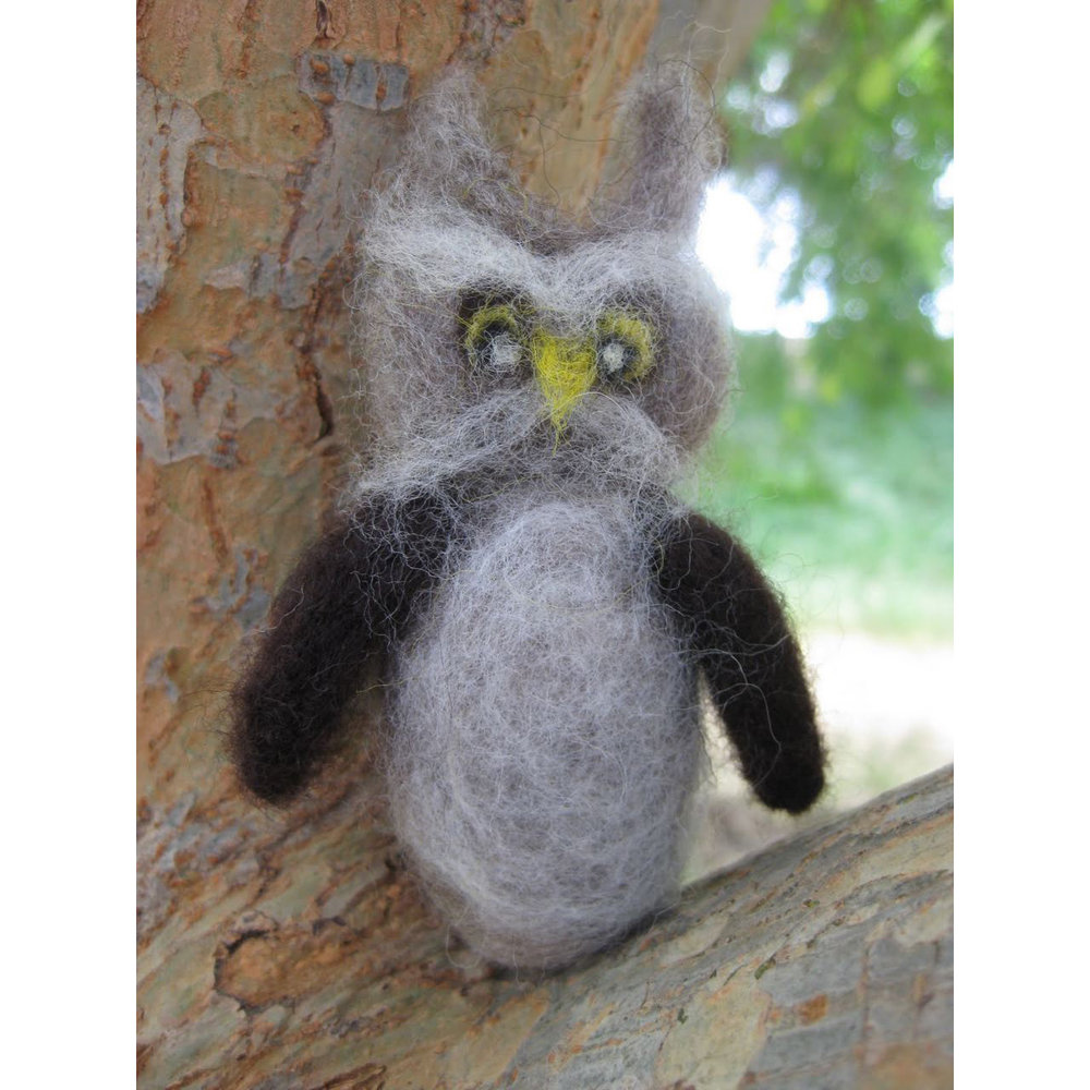 Mr Owl in his tree.