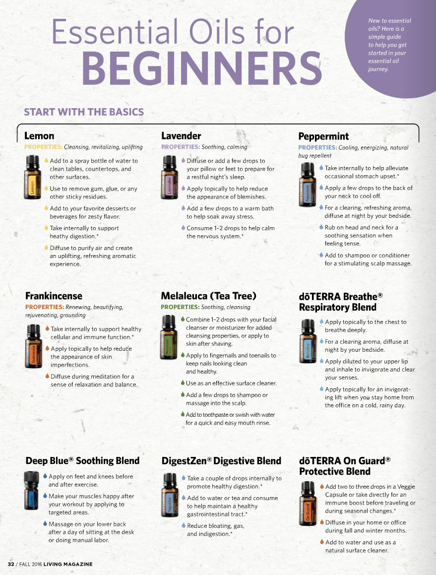 Top 10 oils overview for beginners.png