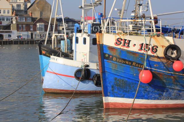 boatsharbour.jpg