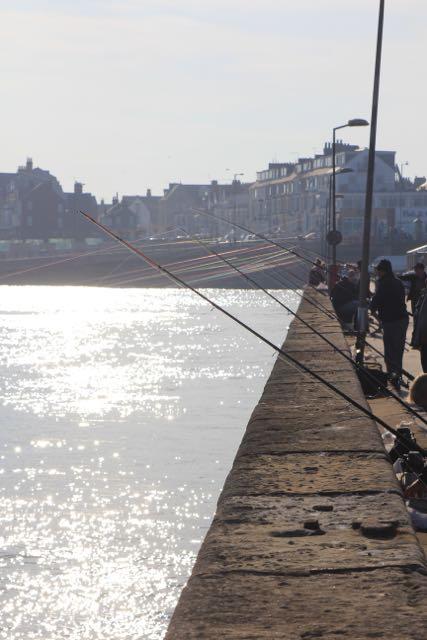 fishinglines