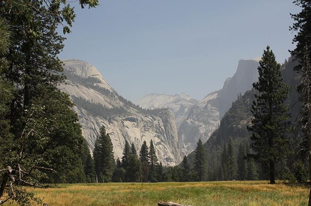 On the Valley View Trail in Yosemite National Park ~ beautiful meadow with Half Dome to the right. Amazing vistas at every turn... . #yosemite #yosemitenationalpark #nationalparks #usnationalparks #california