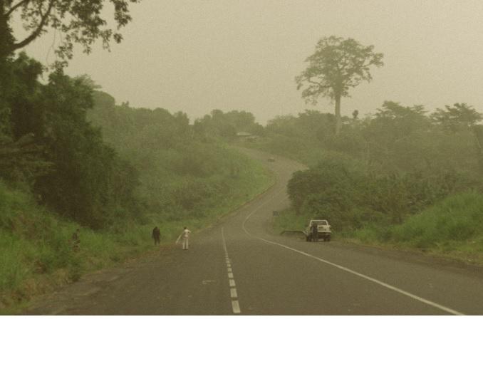 Fotografía realizada por el autor del artículo en la isla de Bioko (Guinea Ecuatorial).