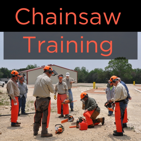 Chainsaw Training.jpg