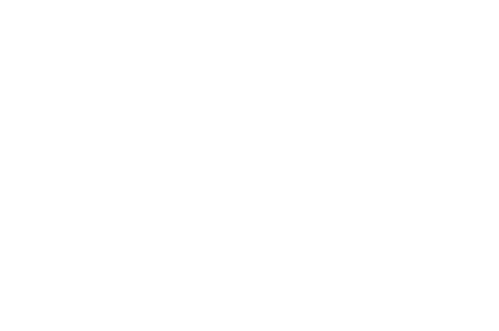 OFFICIAL SELECTION - NorthWestFest - 2018 (2).png