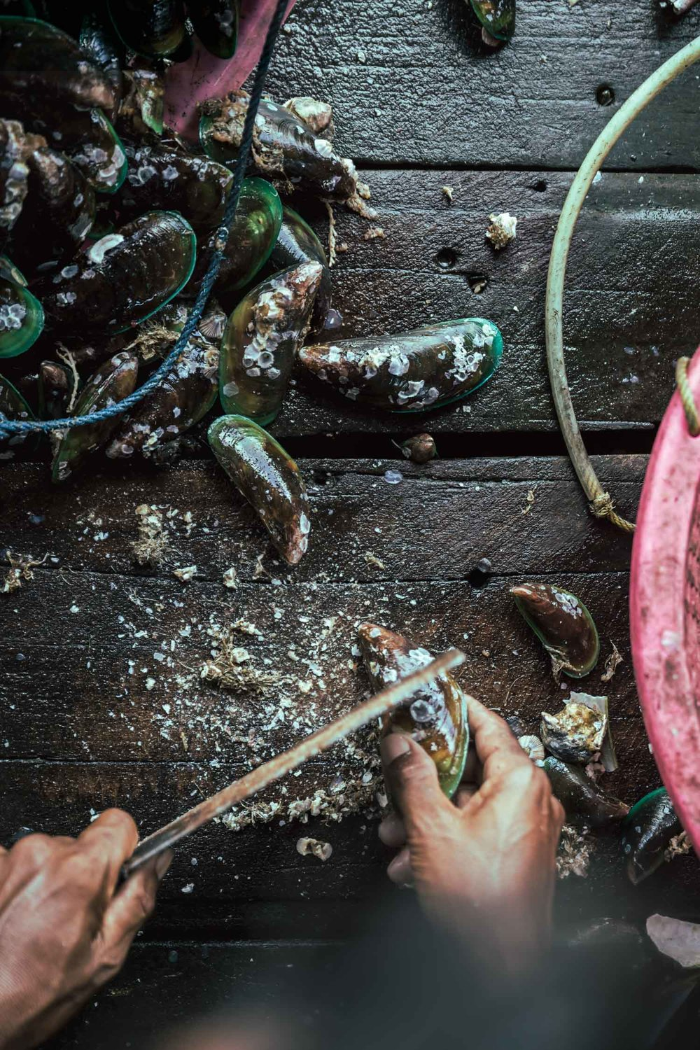 A lot of work goes behind the scenes before our seafood reaches our tables, such as the cleaning of mussels (scraping off barnacles) which has to be done individually and can be labour intensive.