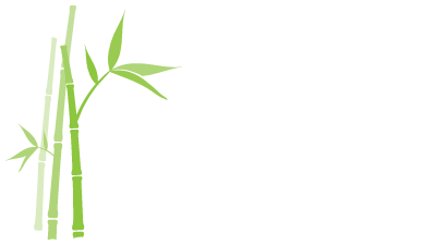 Bamboo Medical Communications – Veeva Multichannel Partner