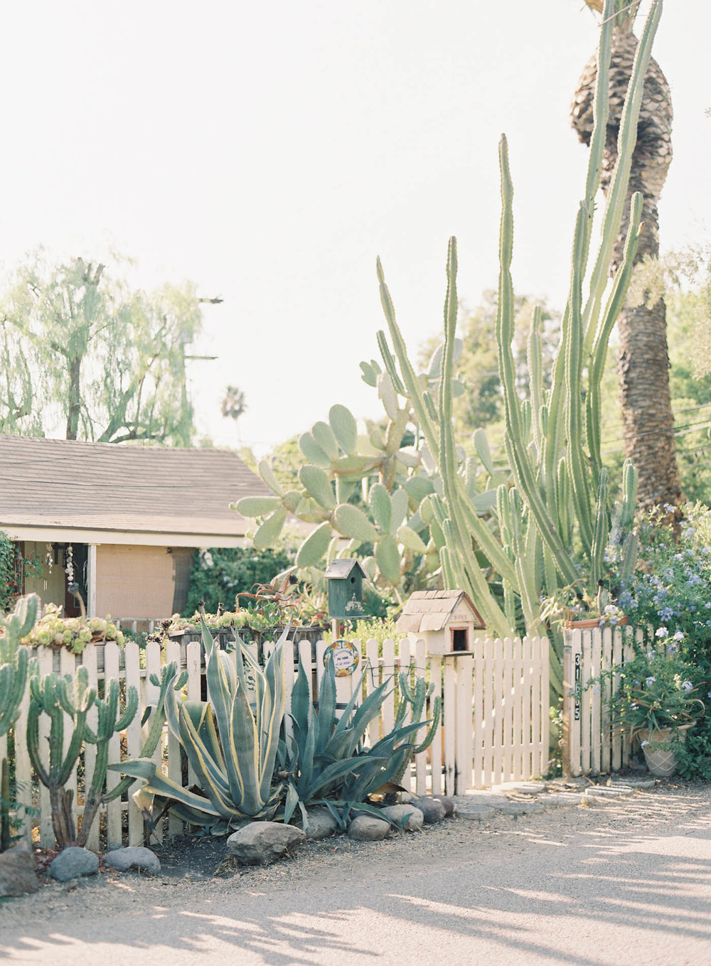 franciscan-gardens-wedding-9-Jen_Huang-000754-R1-011.jpg
