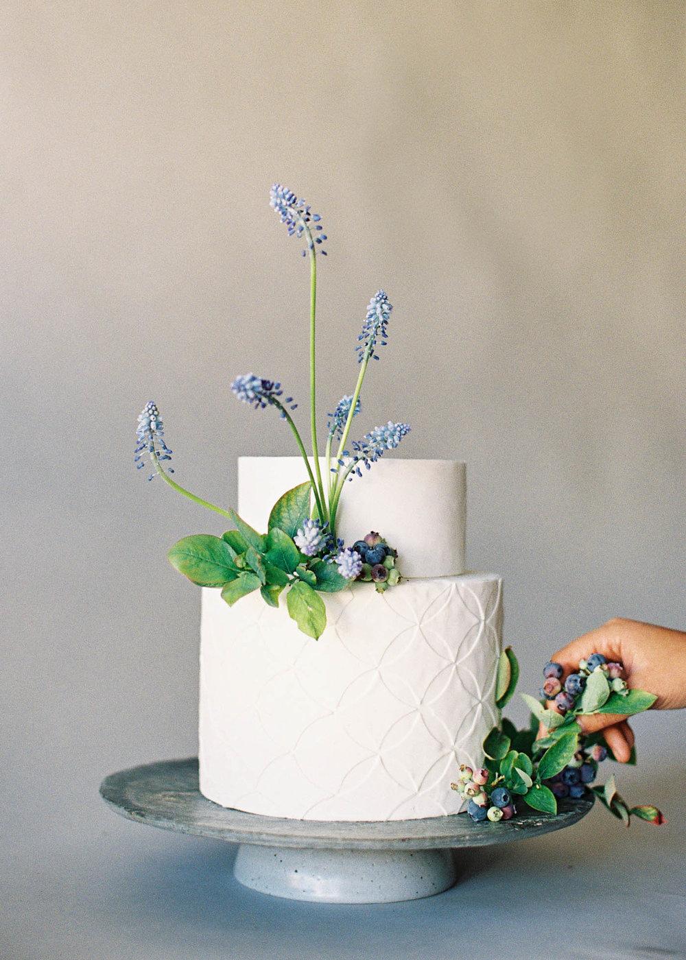 naturalist-cakes-4-Jen_Huang-000485-R1-035-16.jpg