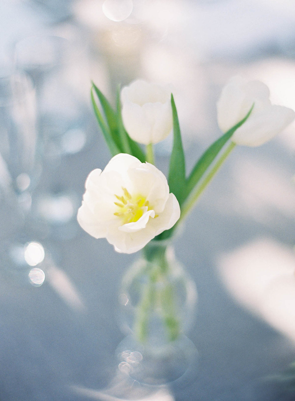 san-juan-capistrano-wedding-jen-huang-20.jpg