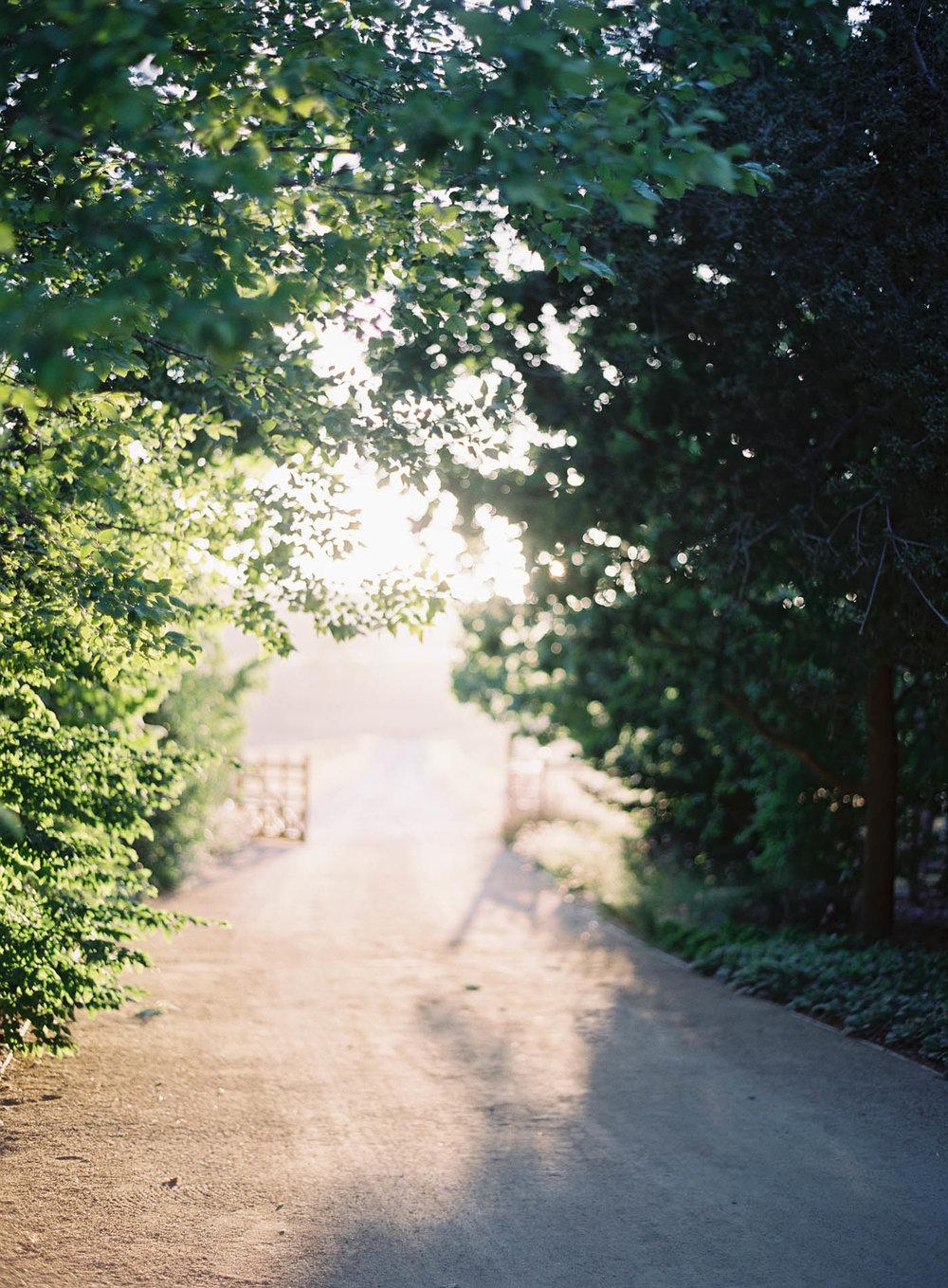 Kestral-Ranch-32-Jen_Huang-008086-R1-E003.jpg