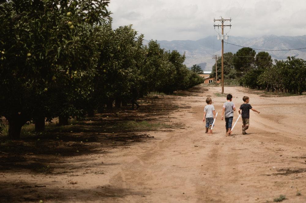 road-3.jpg