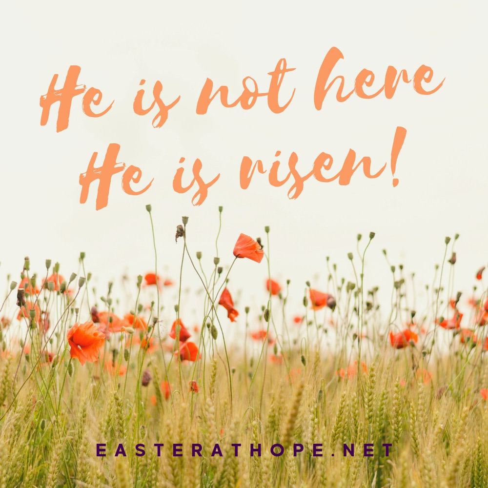 """I would love to have you join me for Easter this year! Message me or go to easterathope.net to find out details and times. #easterathope  """"Then the men asked, """"Why are you looking among the dead for someone who is alive? He isn't here! He is risen from the dead! Remember what he told you back in Galilee,   that the Son of Man must be betrayed into the hands of sinful men and be crucified, and that he would rise again on the third day."""" - Luke 24:5-7"""