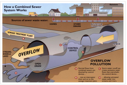 Graphic showing the process of combined sewage overflows. Photo by NY Department of Environmental Conservation..