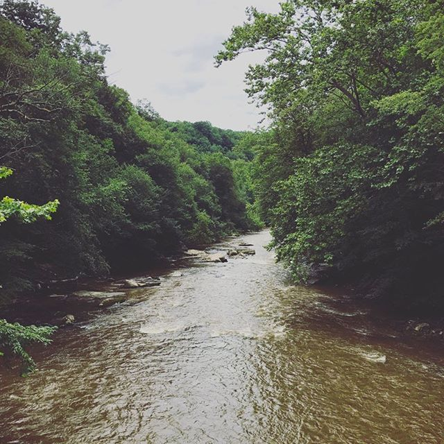 Did you know that PA has approximately 84,000 miles of rivers and streams and 19,900 miles are considered impaired by the EPA? With accurate monitoring and mitigation we can work towards bettering the health of our waterways