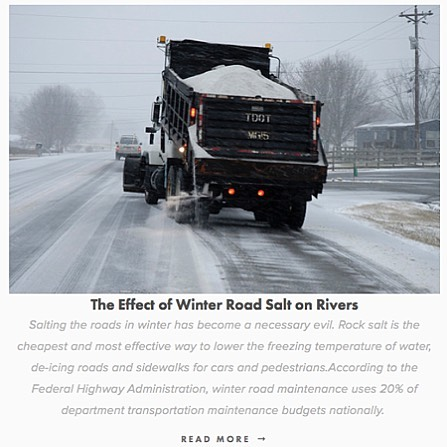 As we get another dusting of snow, check out our blog to see the aftermath of spreading road salt in the winter.