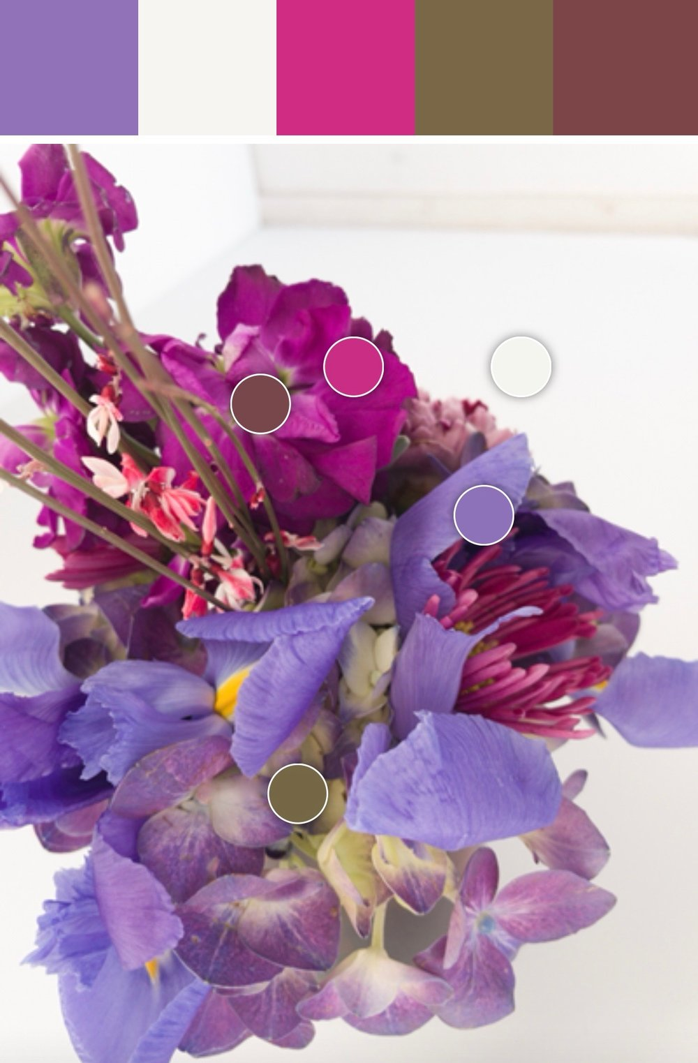Petalfox Ultra Violet Floral Collection