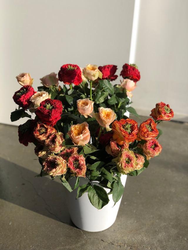 Petalfox Flowers.jpg