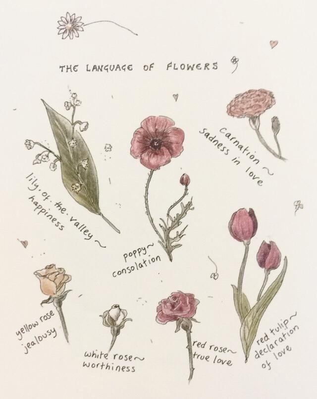 Flower Talk via    Mori Girl