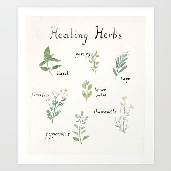 Shop the    Healing Herb art