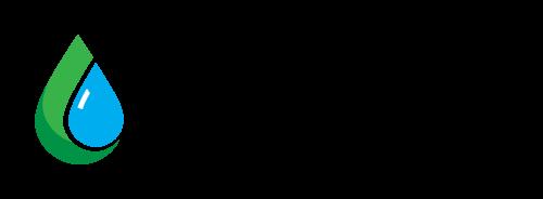 bnss-logo-rgb-500x184 (transparent) (1)