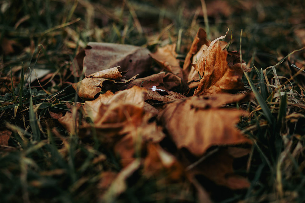 Shutter Up Studios | Wedding photographer in Crawfordsville Indiana | Diamond engagement ring on fall autumn leaves