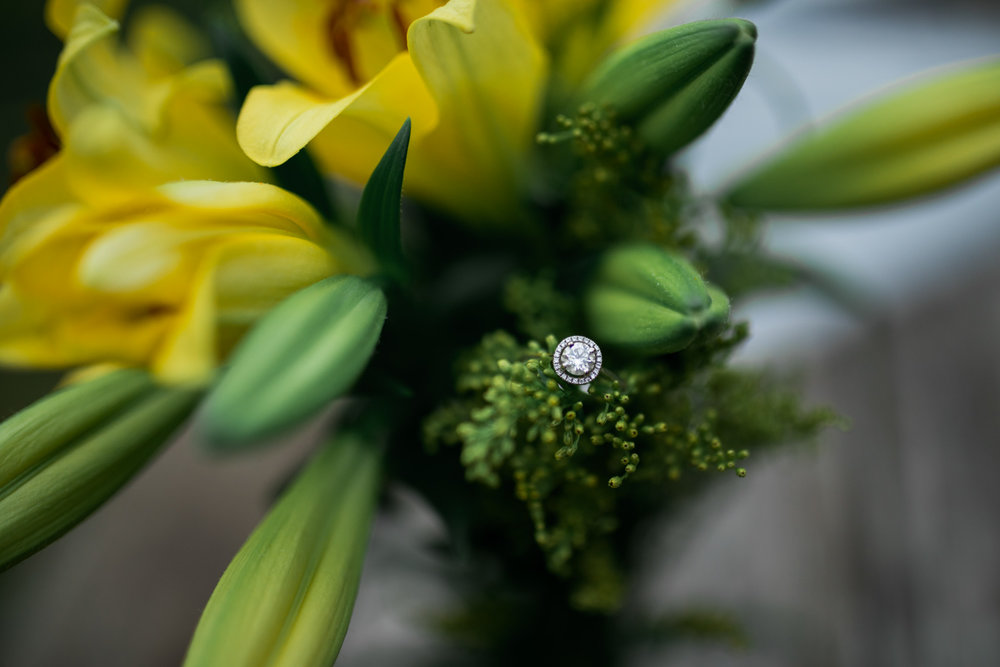 Shutter Up Studios   Engagement photographer in West Lafayette, Indiana   Close up yellow daffodil flowers with halo diamond ring