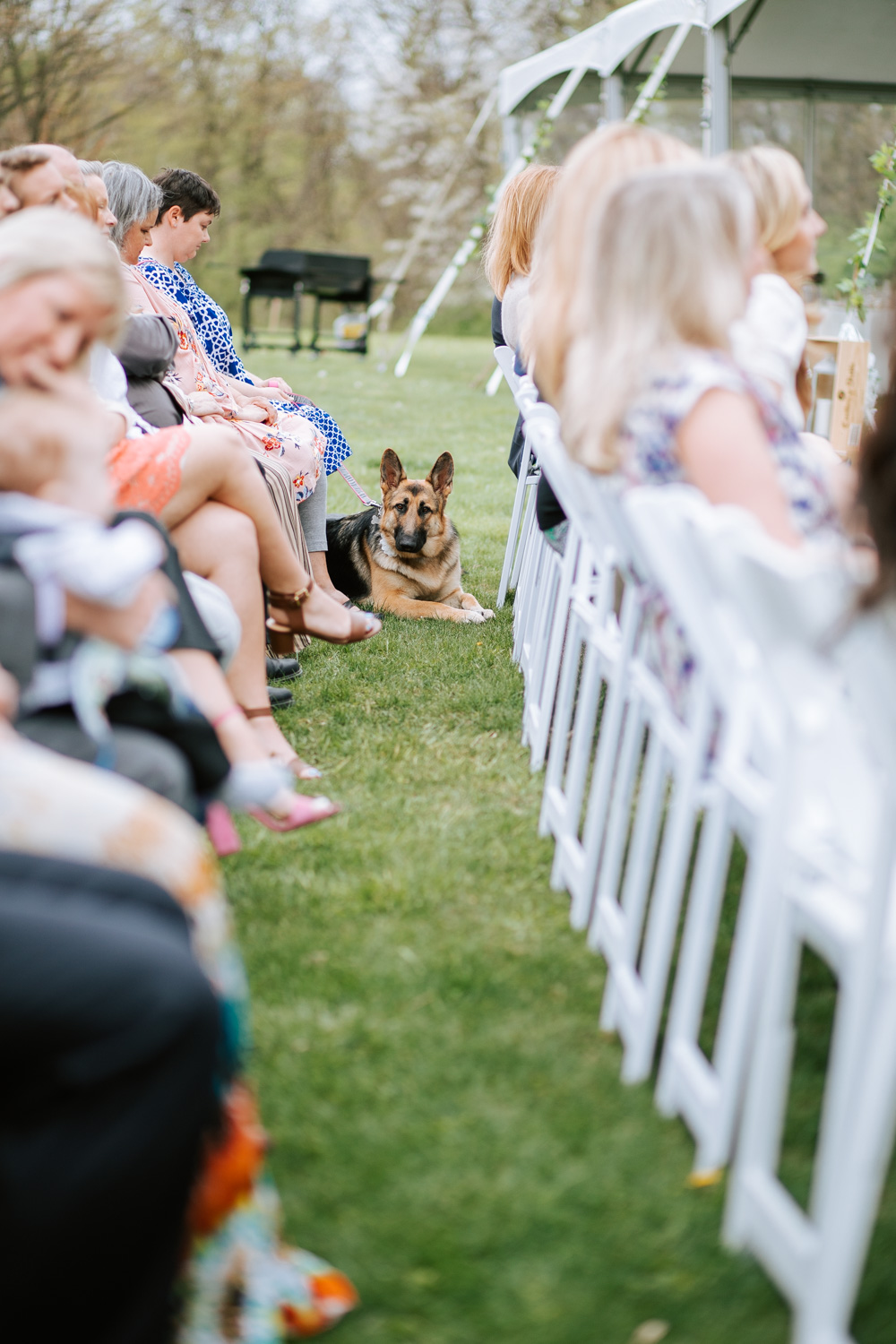 Shutter Up Studios   Wedding photographer in Pittsburgh, Pennsylvania   Outdoor rustic elegant country chic ceremony with German shepherd dog