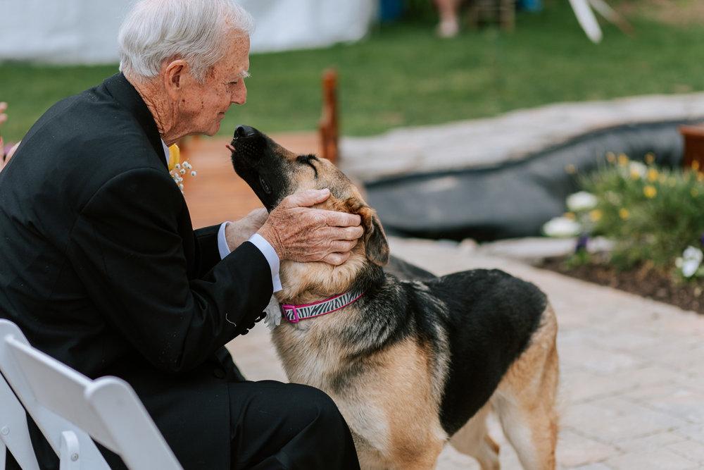 Shutter Up Studios   Wedding photographer in Pittsburgh, Pennsylvania   Outdoor elegant ceremony with German shepherd dog