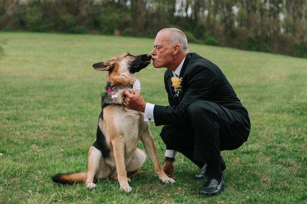 Shutter Up Studios   Wedding photographer in Pittsburgh, Pennsylvania   Groom kissing German shepherd dog