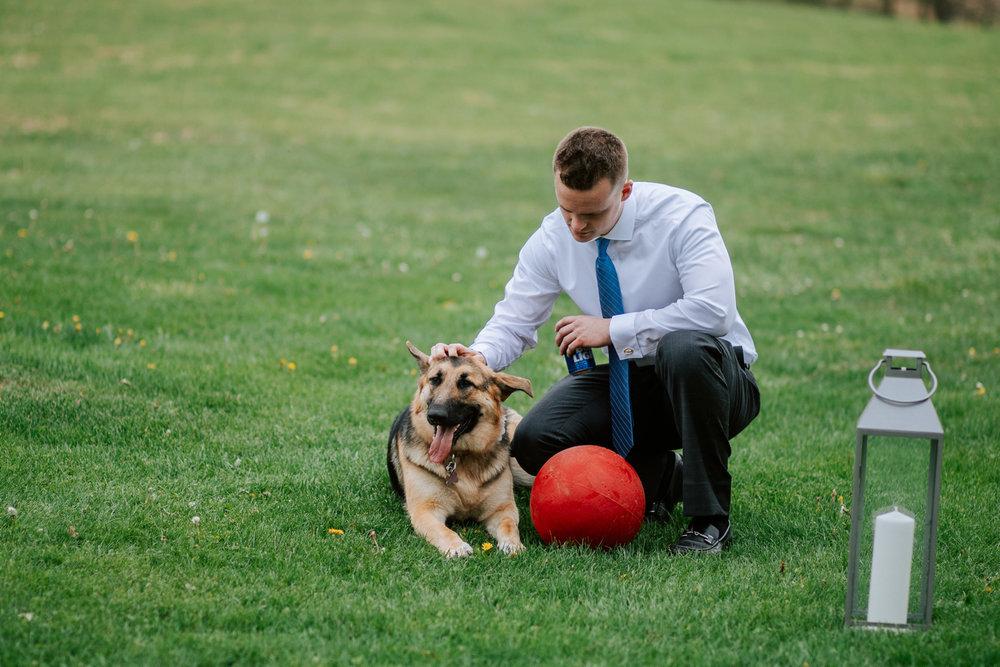 Shutter Up Studios   Wedding photographer in Pittsburgh, Pennsylvania   Groom's son with German shepherd dog