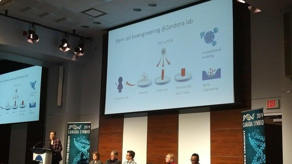 Dr. Laura Prochazka (postdoc in the Zandstra lab, University of Toronto/UBC) presents work to engineer stem cells using synthetic biology.  (Photo by Benjamin Scott)