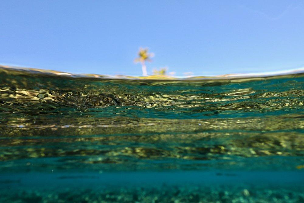 """Dreams of Blue Skies and Rainbow Palms"" ~ Fakarava, French Polynesia ~ no.14"
