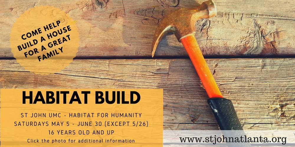 habitat build.jpg