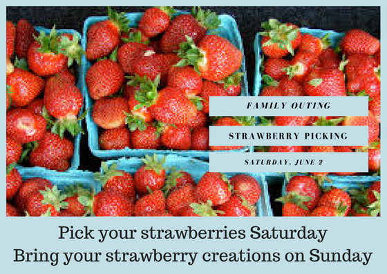 Berry Picking! - Raise your hand if you love strawberries.  Raise your hand if you love to bake with strawberries.  Raise your hand if you'll be out of school and want something to do...with strawberries.  On Saturday, June 2, St. John will be going strawberry picking at Adams Farm & wants you to join us for a fun event for the whole family.  Call the church office for more information: 404.255.1384