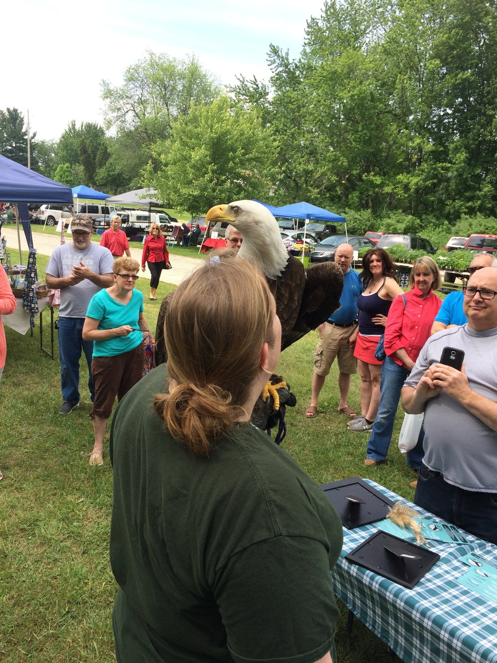 Michigan Birds of Prey  - Survival at its finest.  Three engaging birds of prey like a hawk, owl, eagle or falcon will visit your site to reveal their remarkable survival adaptations and behaviors. Visitors will have the opportunity to feel feathers, and explore skulls, and other bird parts like feet and bones.Schedule now!