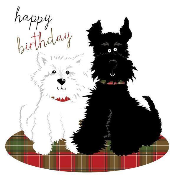 H60-Black-and-White-Terriers_grande_6dd84694-f618-4a32-8339-c21377532ec2.jpg