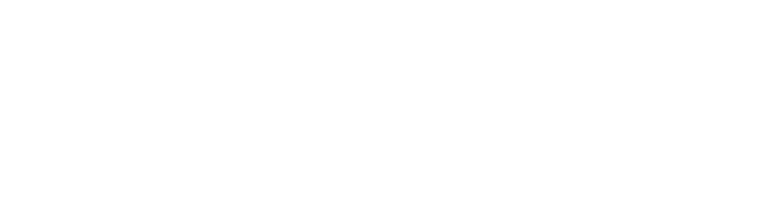 The Dr. L.C. Carter Foundation